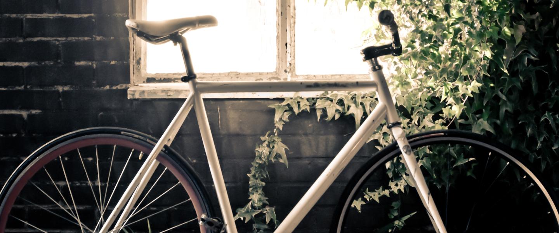 Modelo Healthy Bicycle