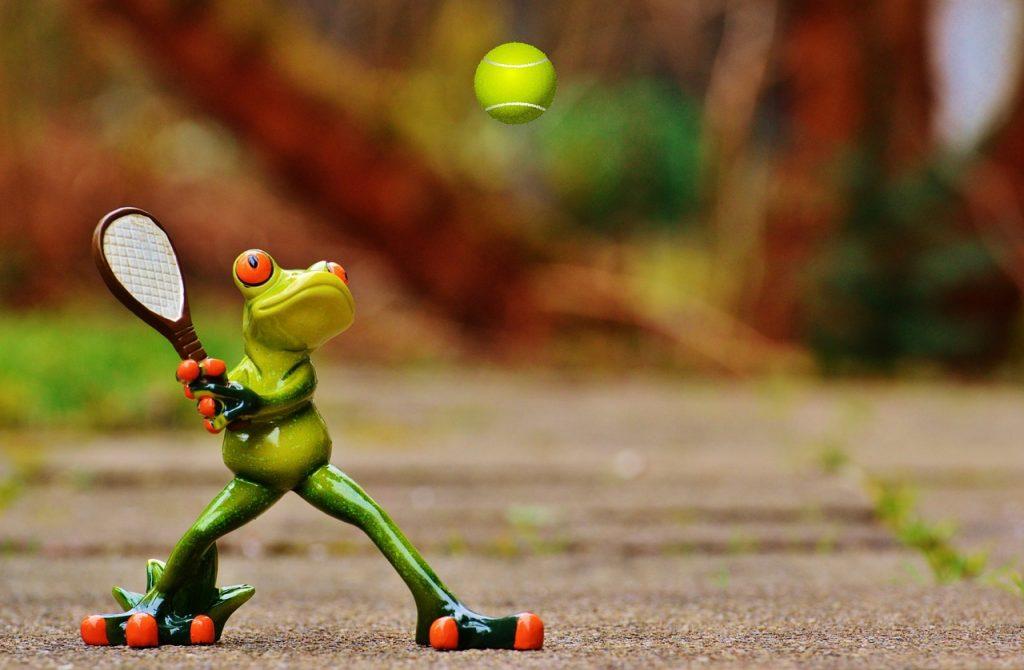frog-1212392_1280