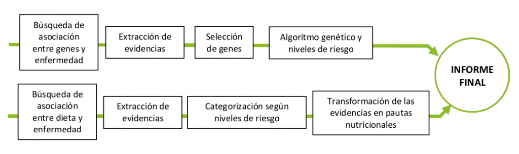 proceso nutrigenetica